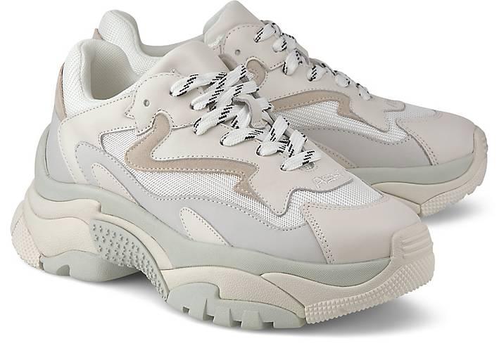 Ash Sneaker ADDICT B