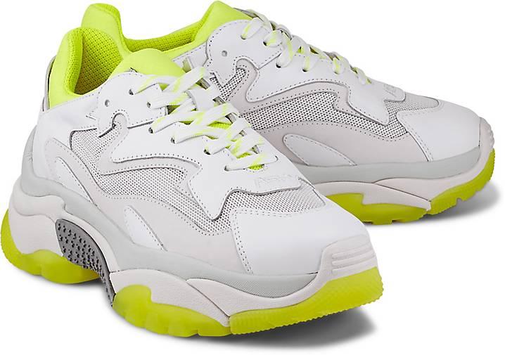 Ash Sneaker ADDICT BIS