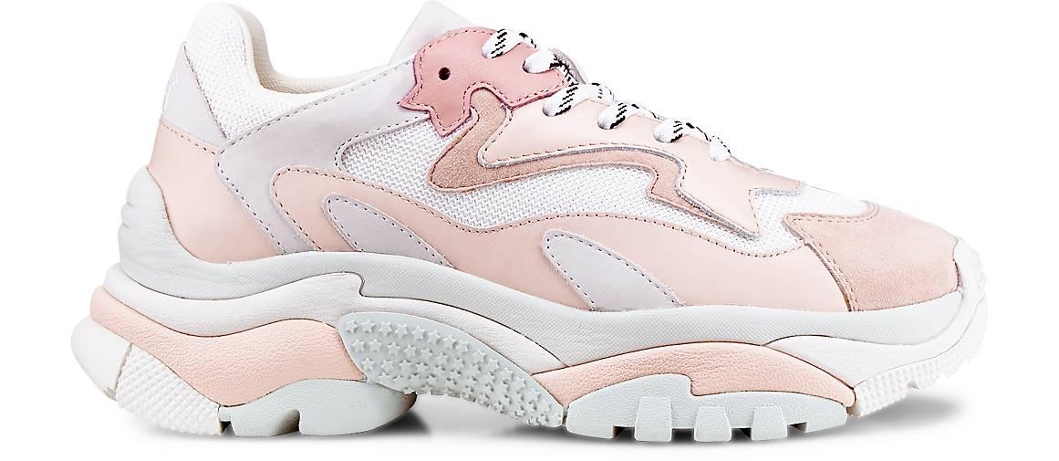Ash Turnschuhe ADDICT ADDICT ADDICT in Rosa kaufen - 47718705 GÖRTZ Gute Qualität beliebte Schuhe 17dd80