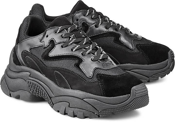 5481258e62 Ash Sneaker ADDICT in schwarz kaufen - 47718701 | GÖRTZ