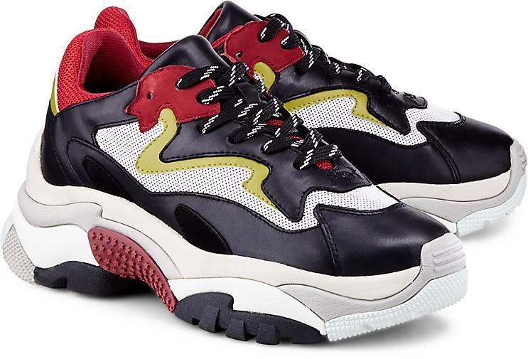 b6acf2cfe1 Ash Sneaker ADDICT in schwarz kaufen - 47718703 | GÖRTZ