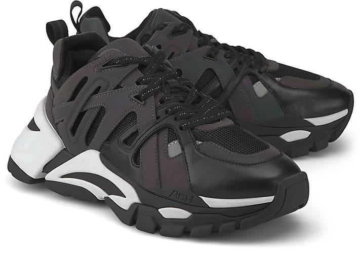 Ash Sneaker FLASH A