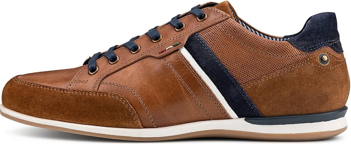 COX Sneaker