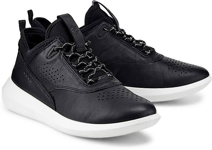 Ecco Sneaker SCINAPSE