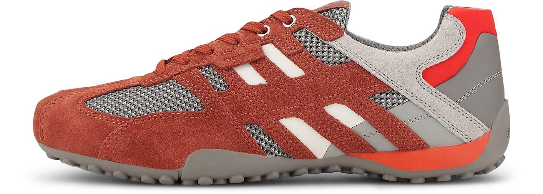 Geox Sneaker U SNAKE E
