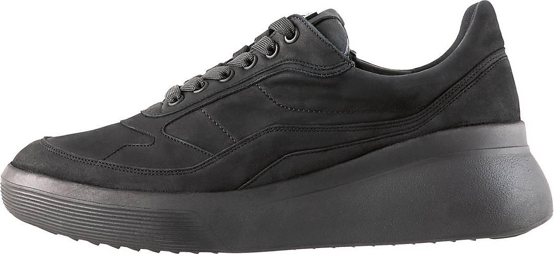 Högl Sneaker WAYNE