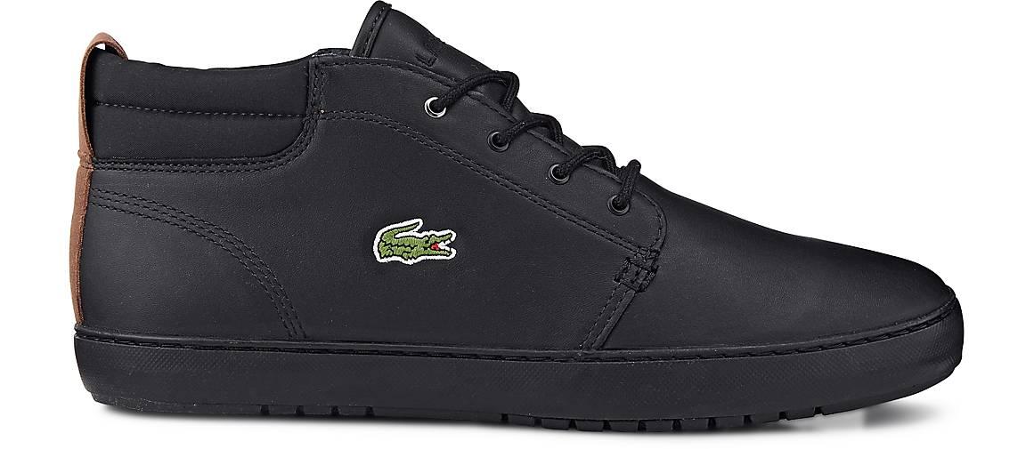 Lacoste AMPTHILL TERRA in | schwarz kaufen - 46541501 | in GÖRTZ Gute Qualität beliebte Schuhe 60e4c8