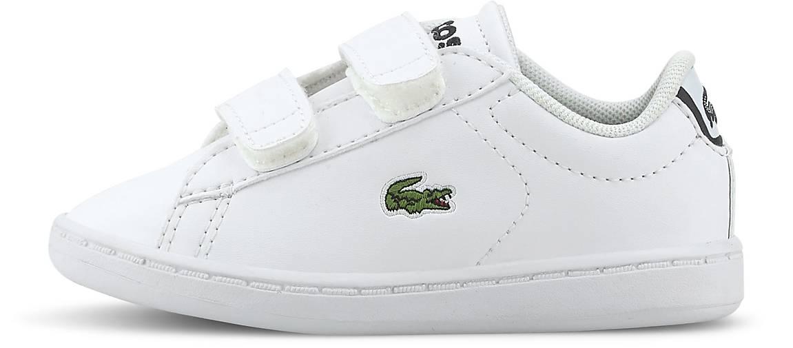 Lacoste Klett-Sneaker CARNABY EVO BL 1 SPI