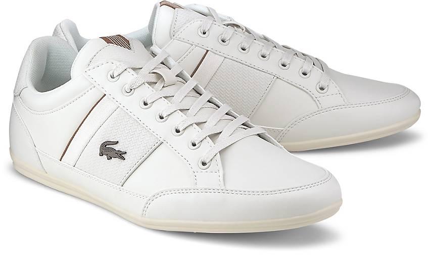 Lacoste Sneaker CHAYMON 319