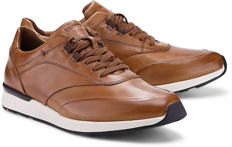 Lloyd Sneaker AJAS