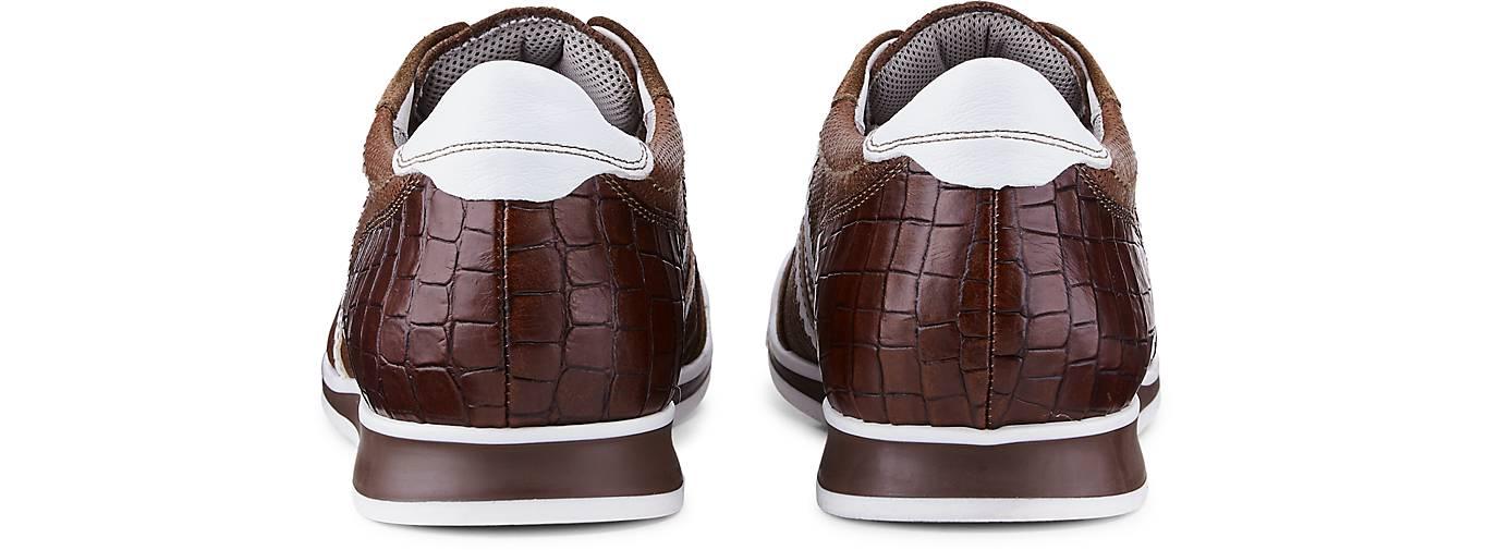 lloyd sneaker argon in braun mittel kaufen 48288901 g rtz. Black Bedroom Furniture Sets. Home Design Ideas