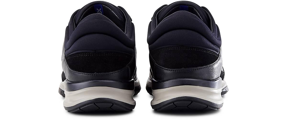 Lloyd Sneaker ASCOT