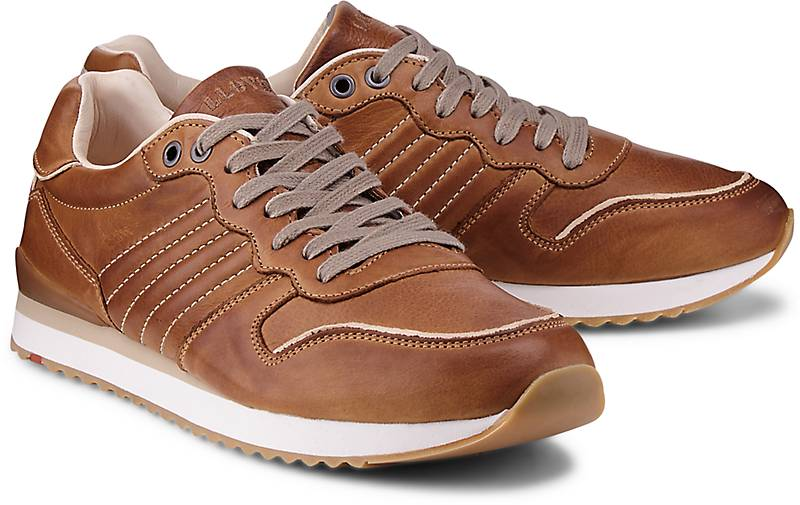 Lloyd Sneaker EDICO