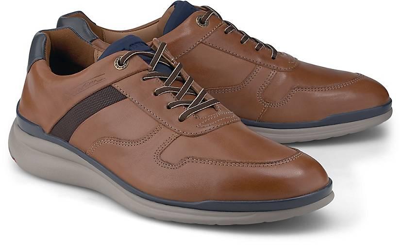 Lloyd Sneaker MATAI