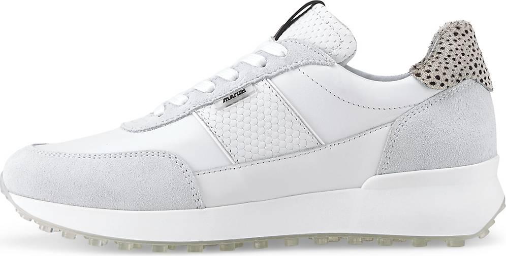 Maruti Sneaker LOIS