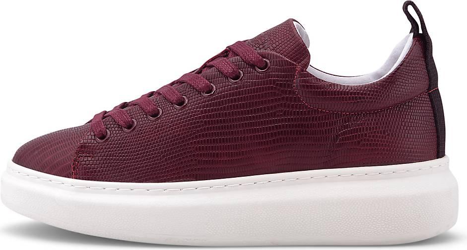 Pavement Sneaker DEE LIZARD