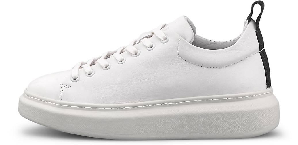 Pavement Sneaker DEE