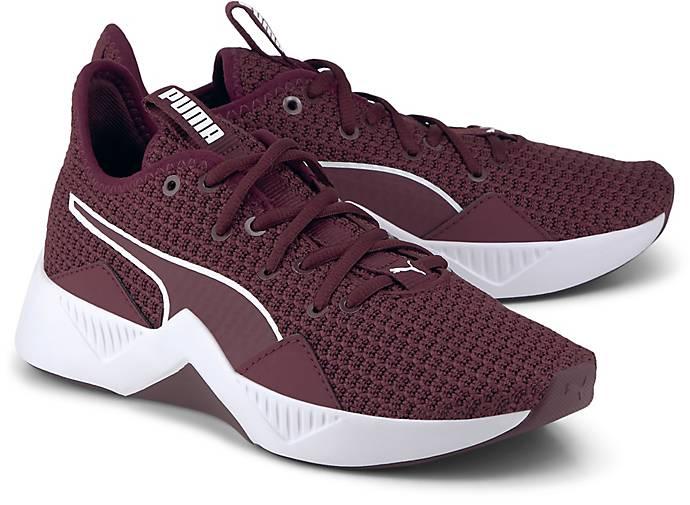 Sneaker INCITE FS WNS